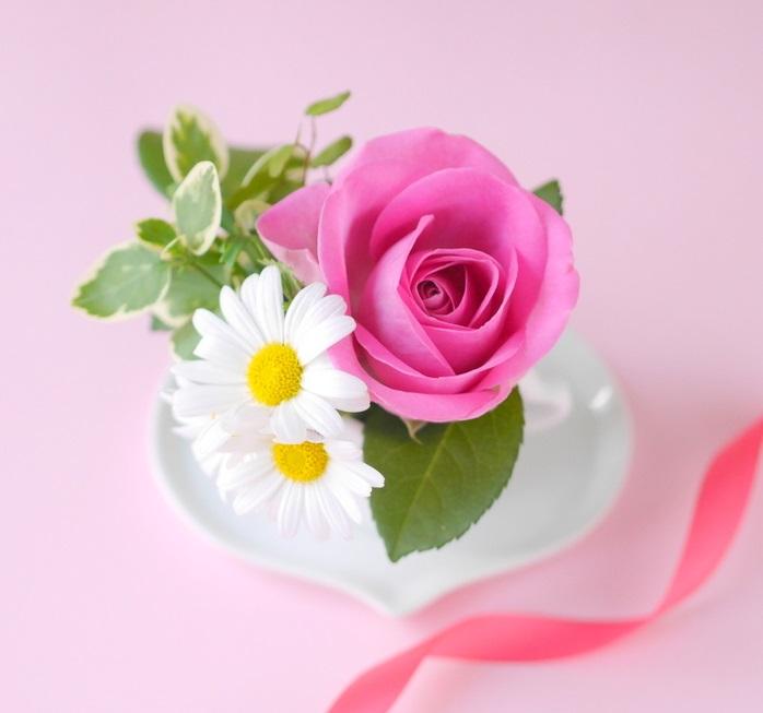 ピンクのバラとひな菊