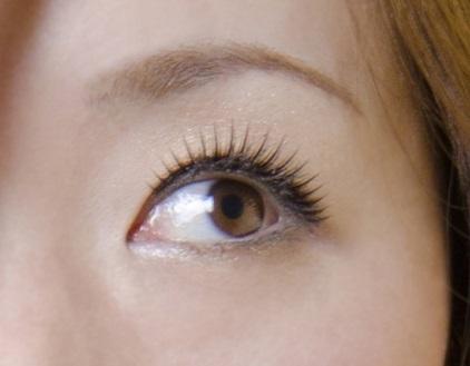 日本人女性の目